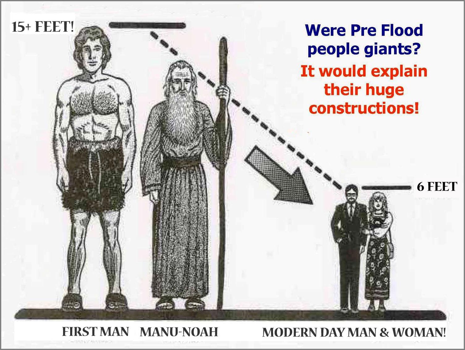 Adam-Noah copy