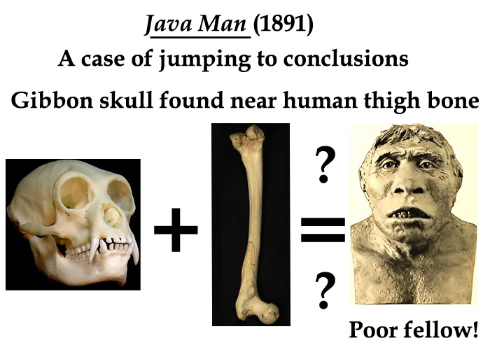 Java man copy