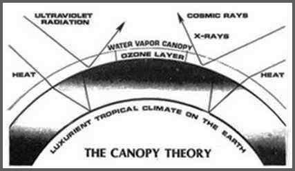 canopy5